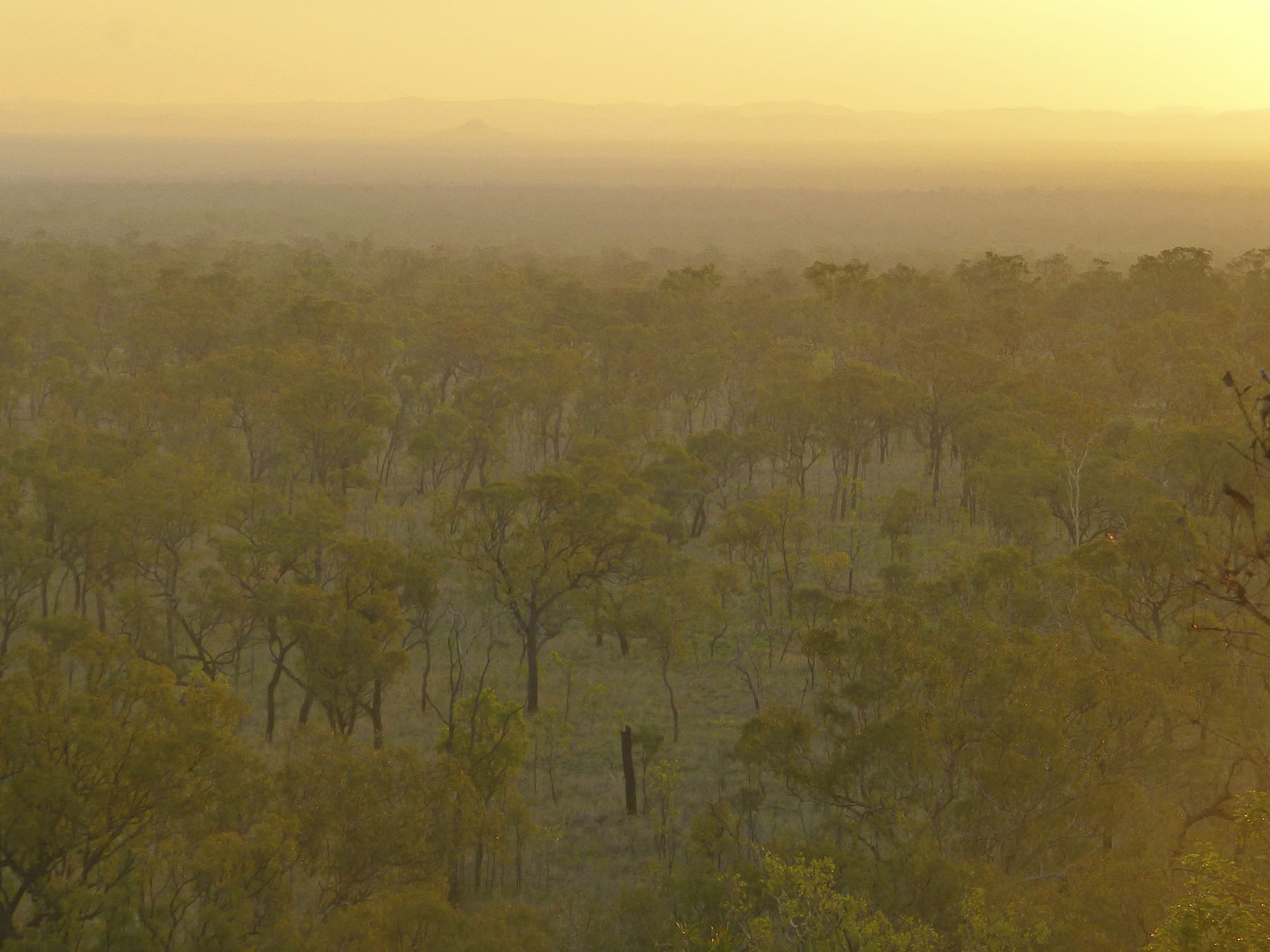 Sunset On The Outback