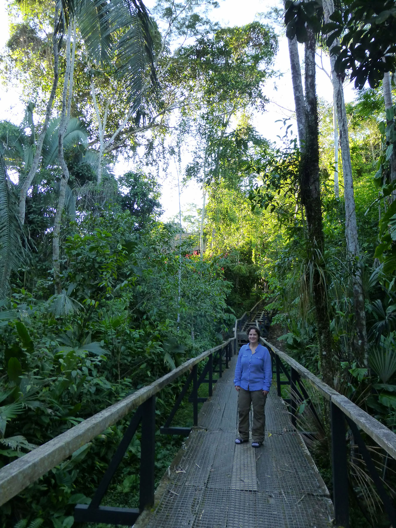 Katie standing on one of the boardwalks that stretches between Sacha Lodge and our room. The jungle is all around!