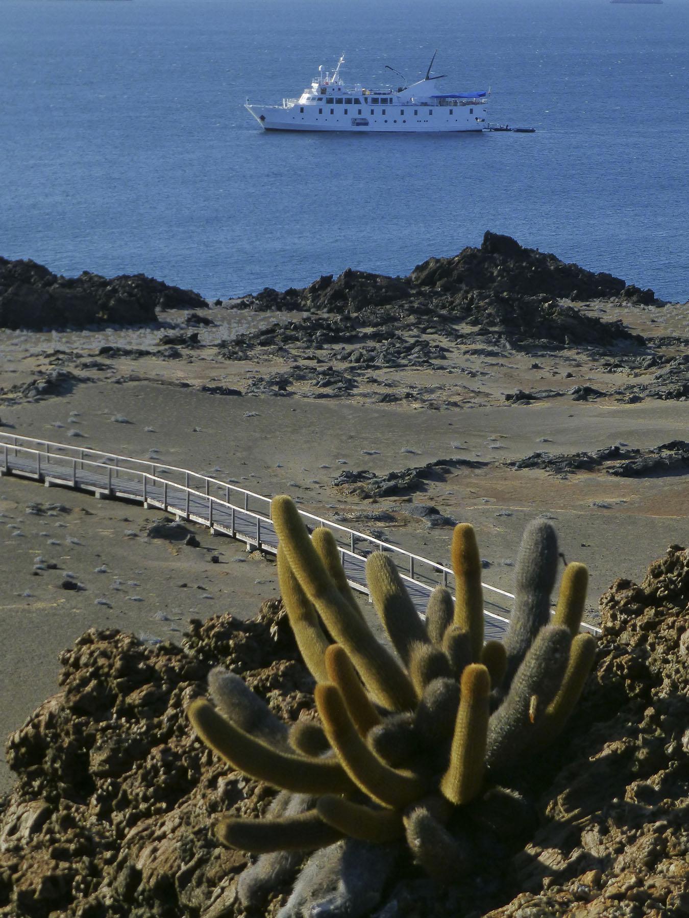 Bartolome Island's Volcanic Landscape