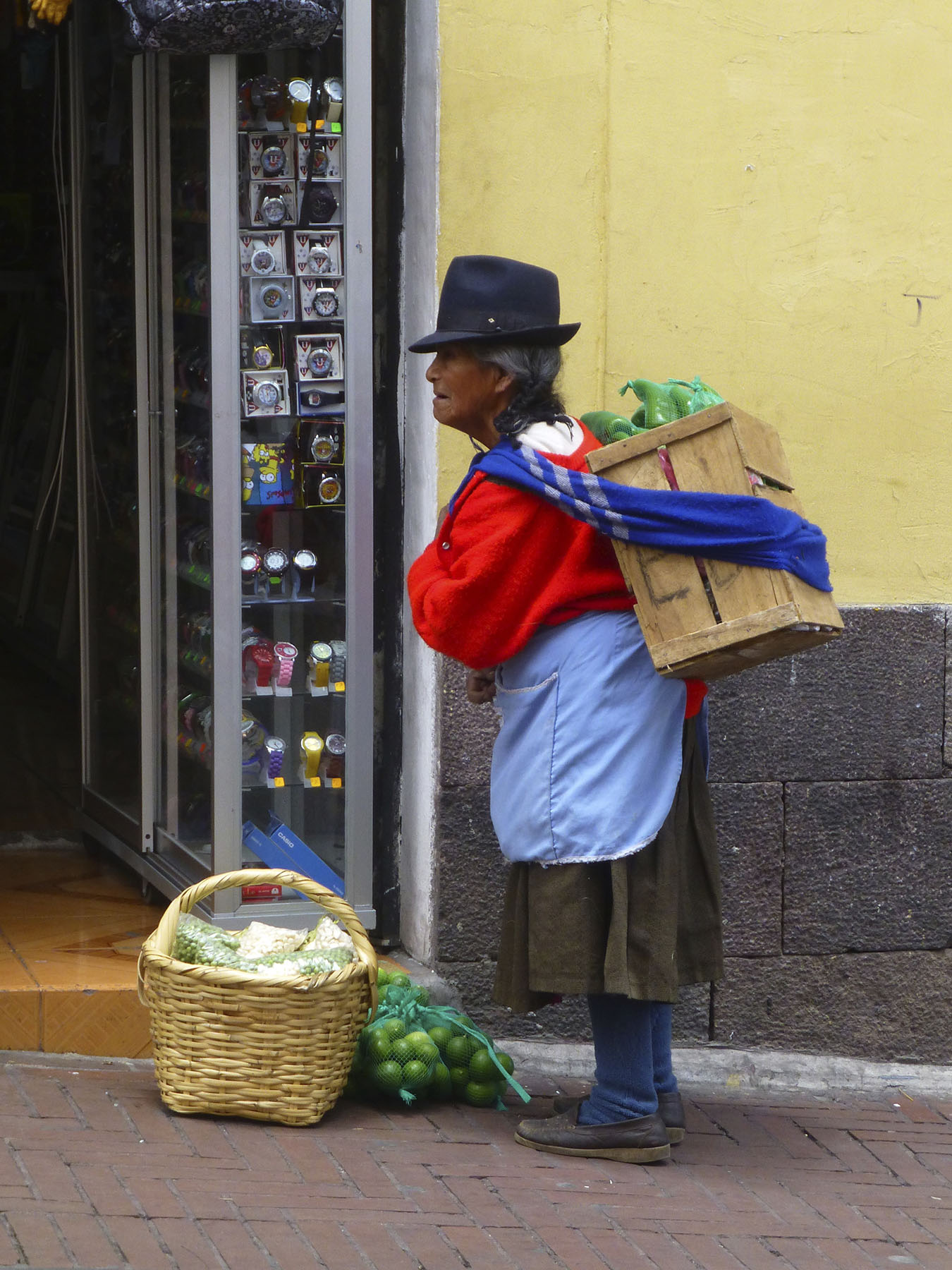 An Andean Woman
