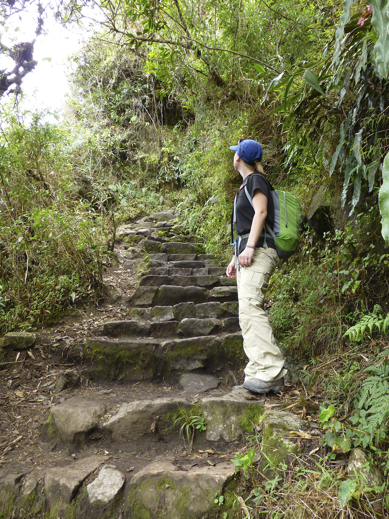 Uneven steps to Huayna Picchu