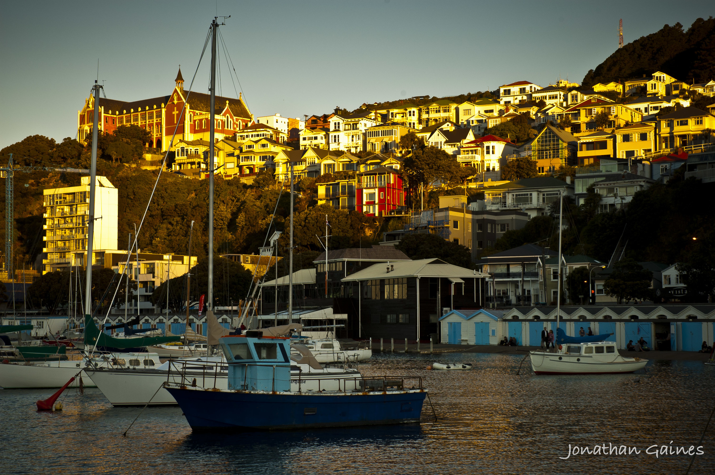 WellingtonHarbour-1.jpg