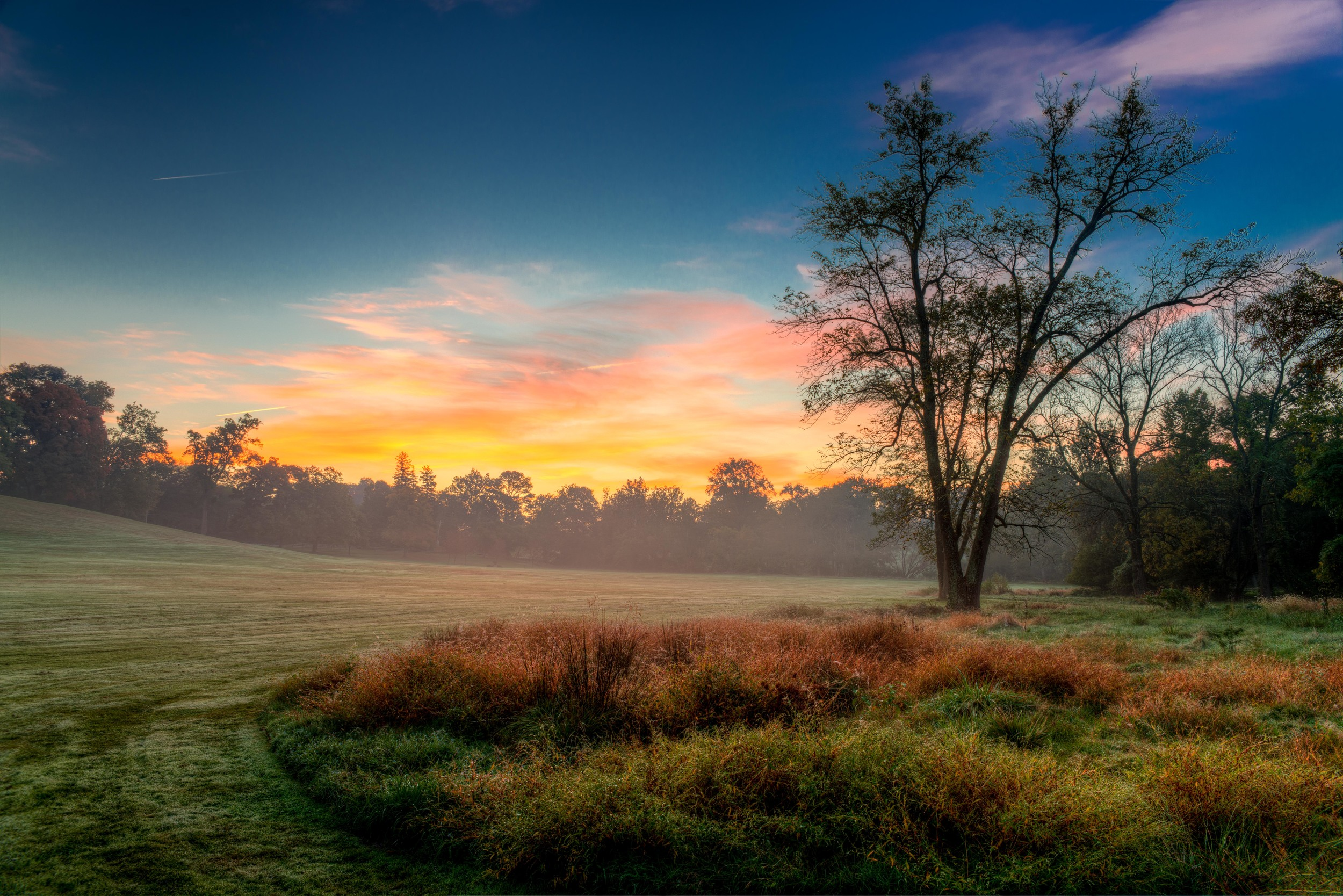 The Willows sunrise