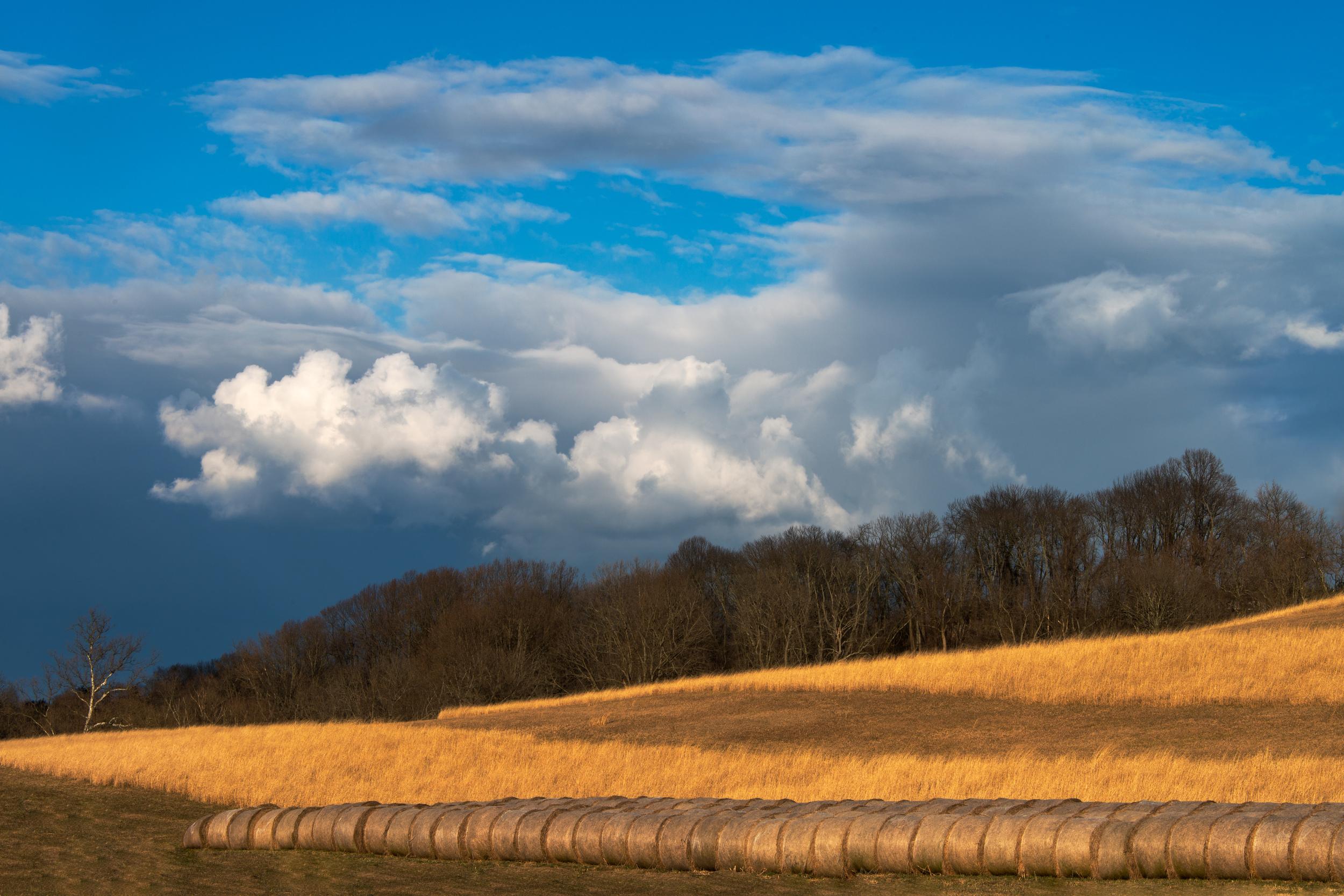 The Waning Barren Landscape (1 of 1).jpg