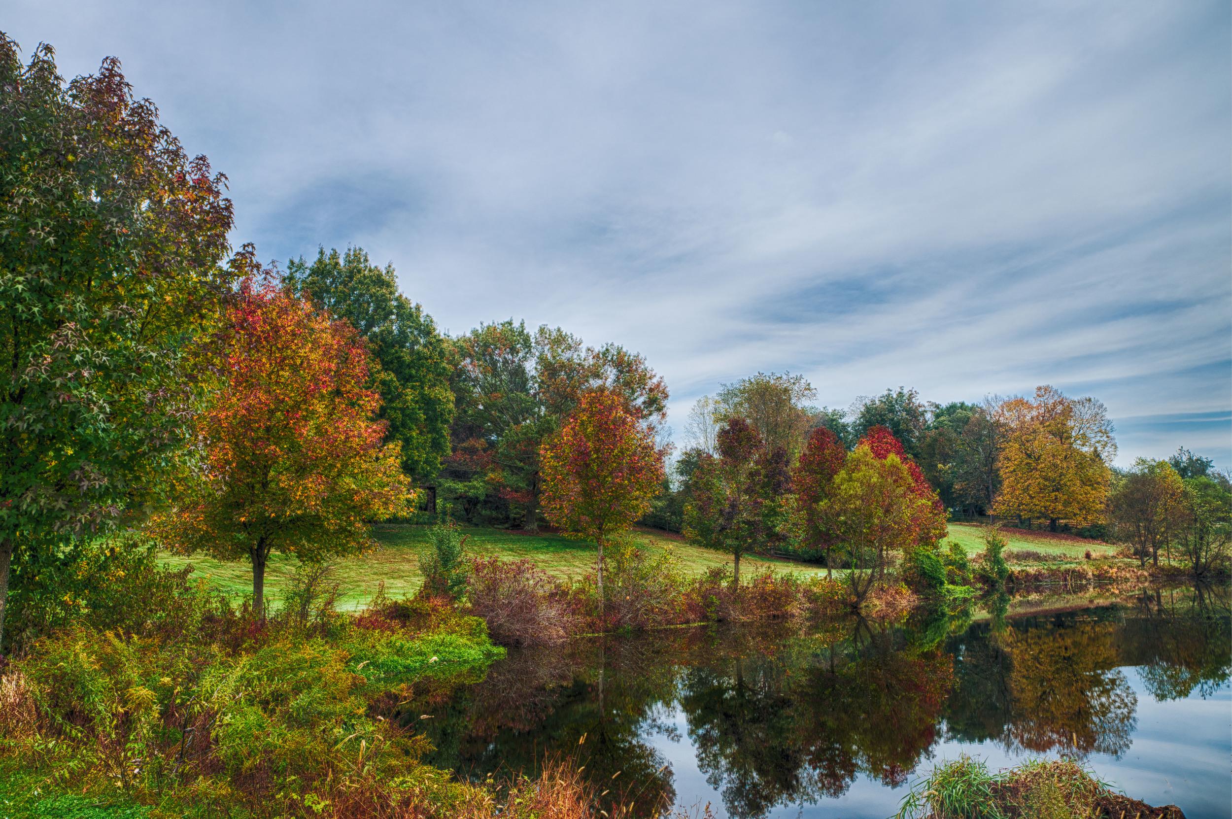 More fall colors (1 of 1).jpg