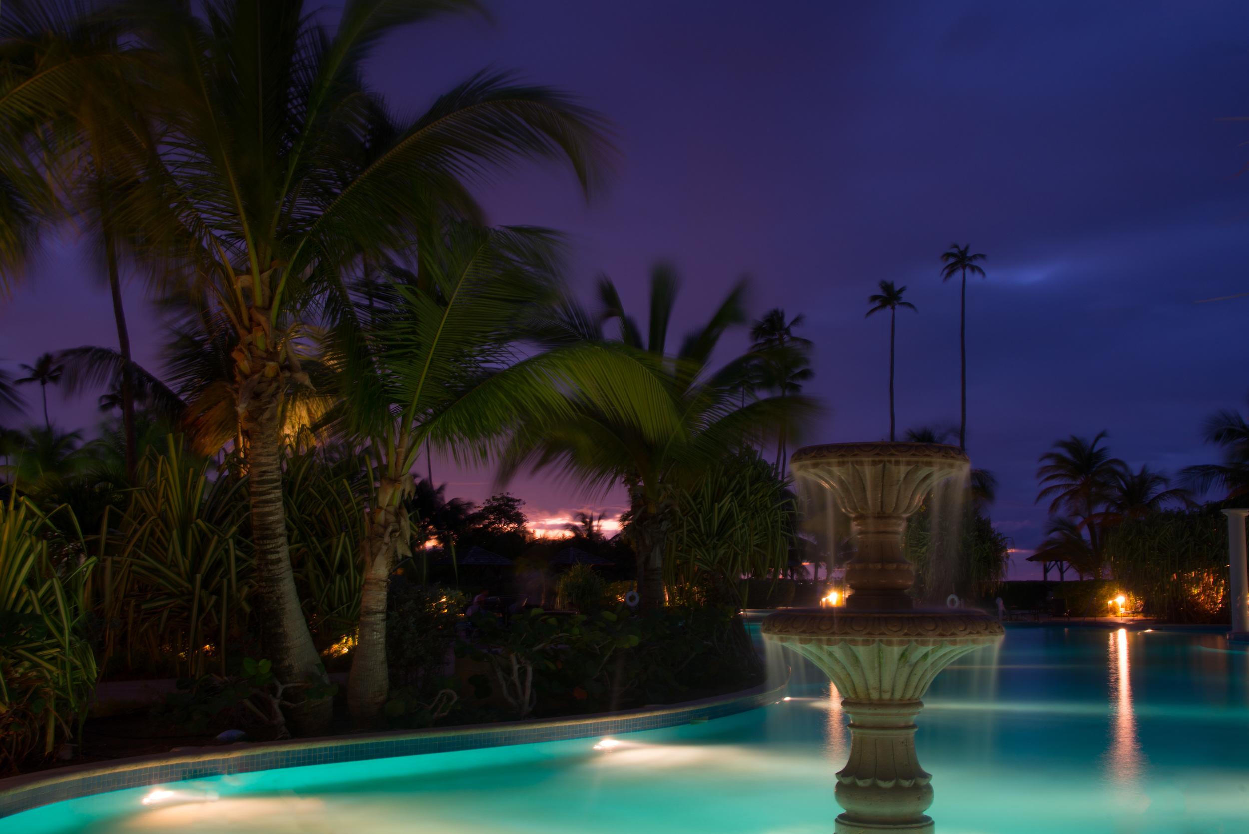 Tropical nights (1 of 1).jpg