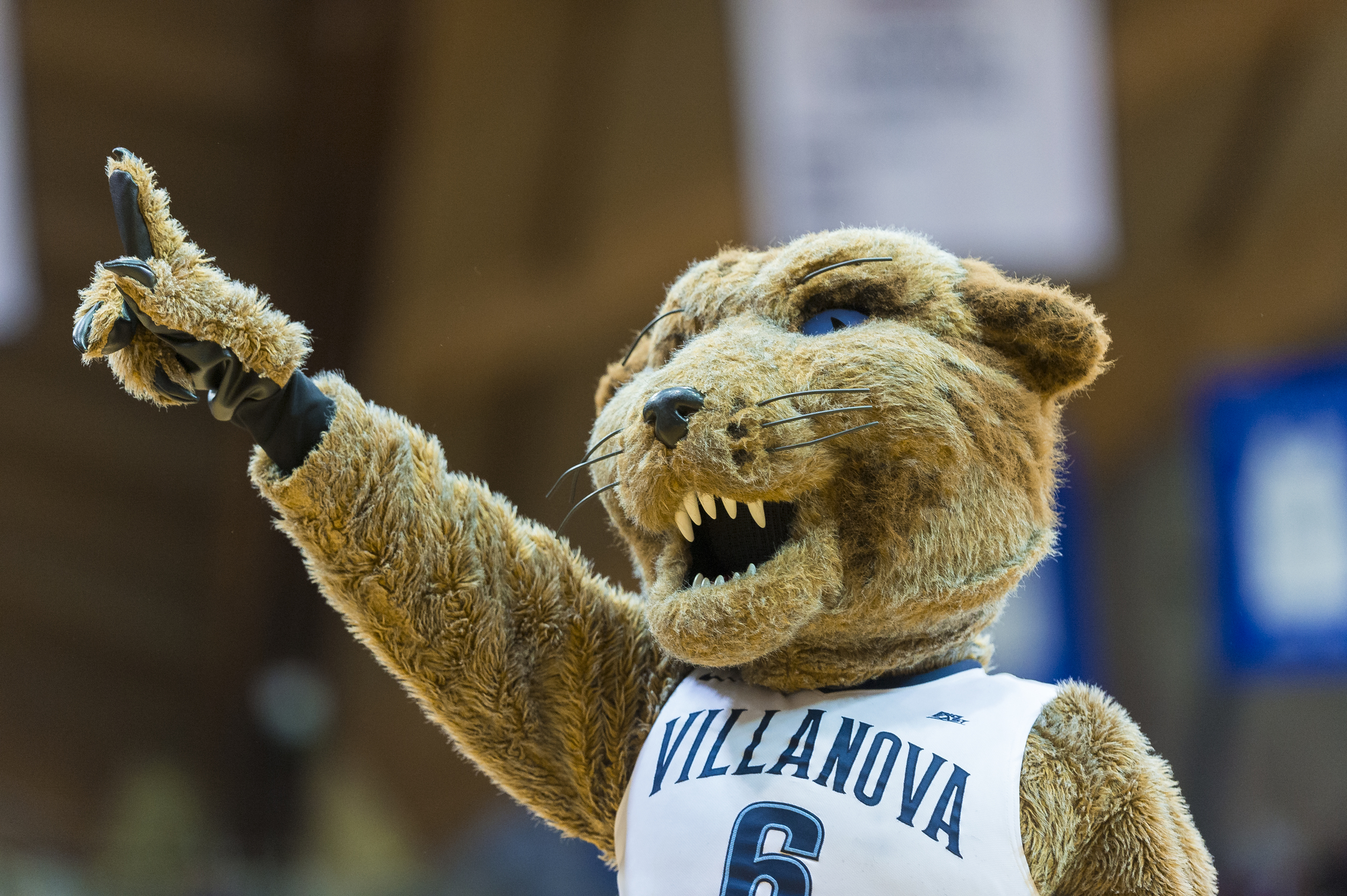 01 March 2016: The Villanova mascot shows the crowd who's number one  during the NCAA basketball game between the DePaul Blue Demons and the Villanova Wildcats played at the Pavilion in Villanova, PA. (Photo by Gavin Baker/Icon Sportswire)