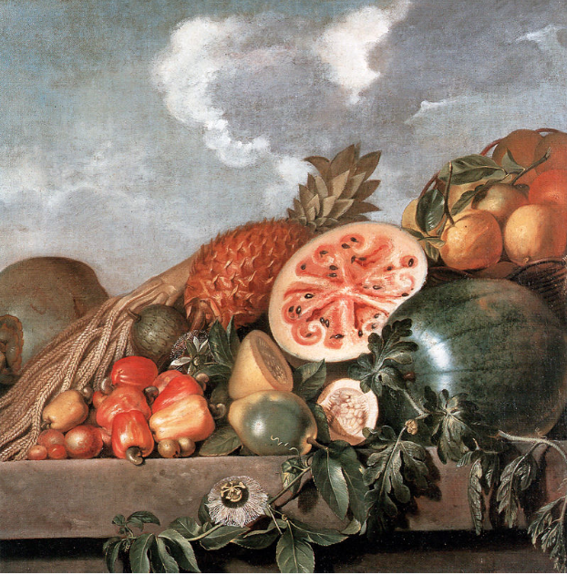 Still Life with Watermelon, Pineapple and other Fruits,  oil on canvas, Albert Eckhout, Dutch painter active in 17th century Brazil