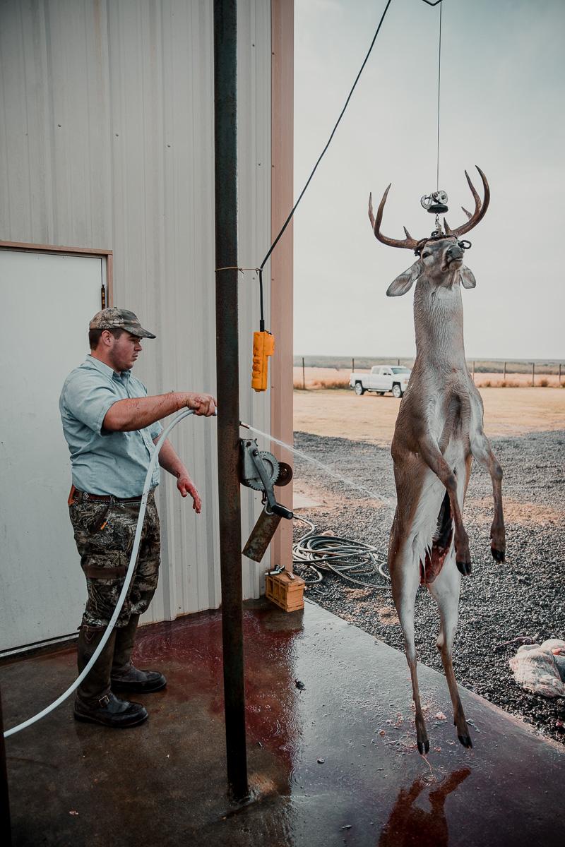 man hosing off a dead deer hanging from a lift