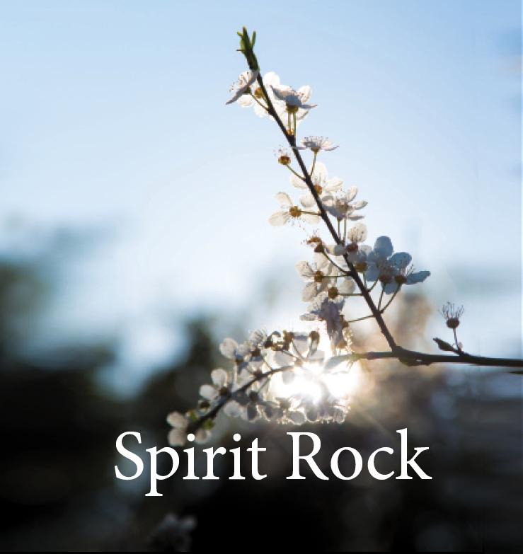 SPIRIT ROCK MEDITATION CENTER | branding