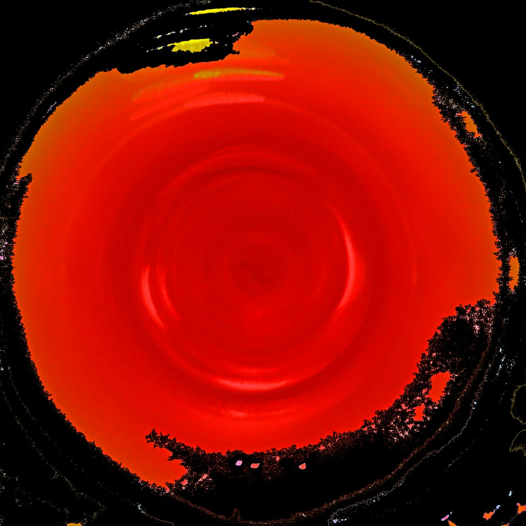 Michael Sachter (CA), Red Centrifuge 2 (2012), photo on paper, cm 50x50.jpg
