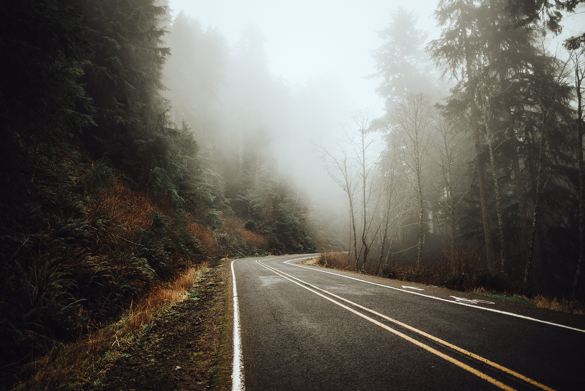 Jay_Cassario_Mystic_Portland_blog101.jpg