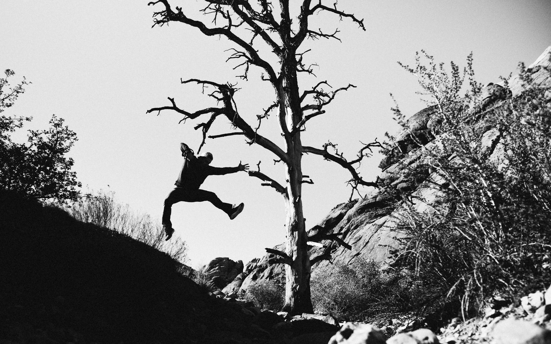 Twisted-Oaks-Studio-wppi-leica-red-rock-canyon-7.jpg