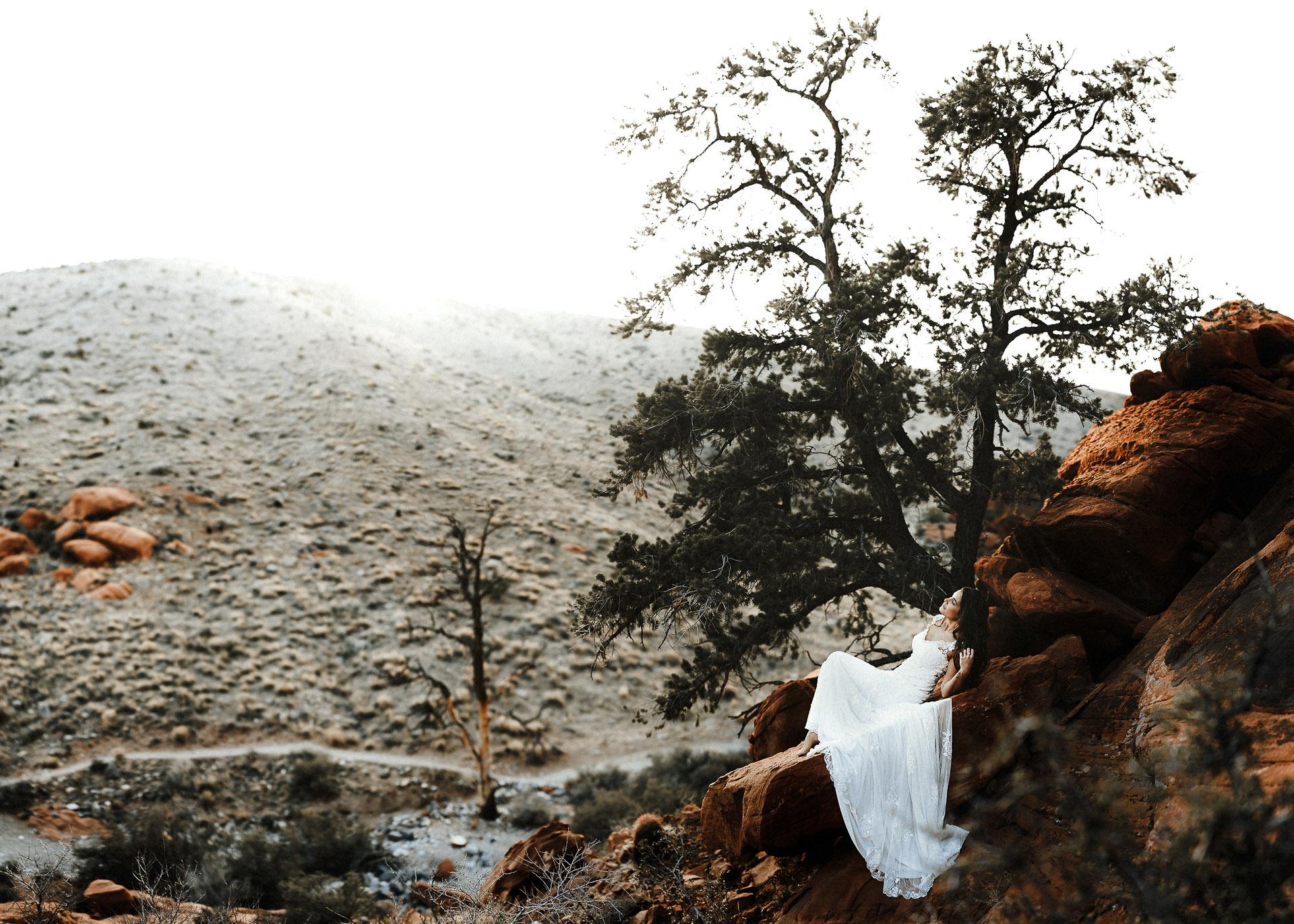 Twisted-Oaks-Studio-wppi-leica-red-rock-canyon-19.jpg