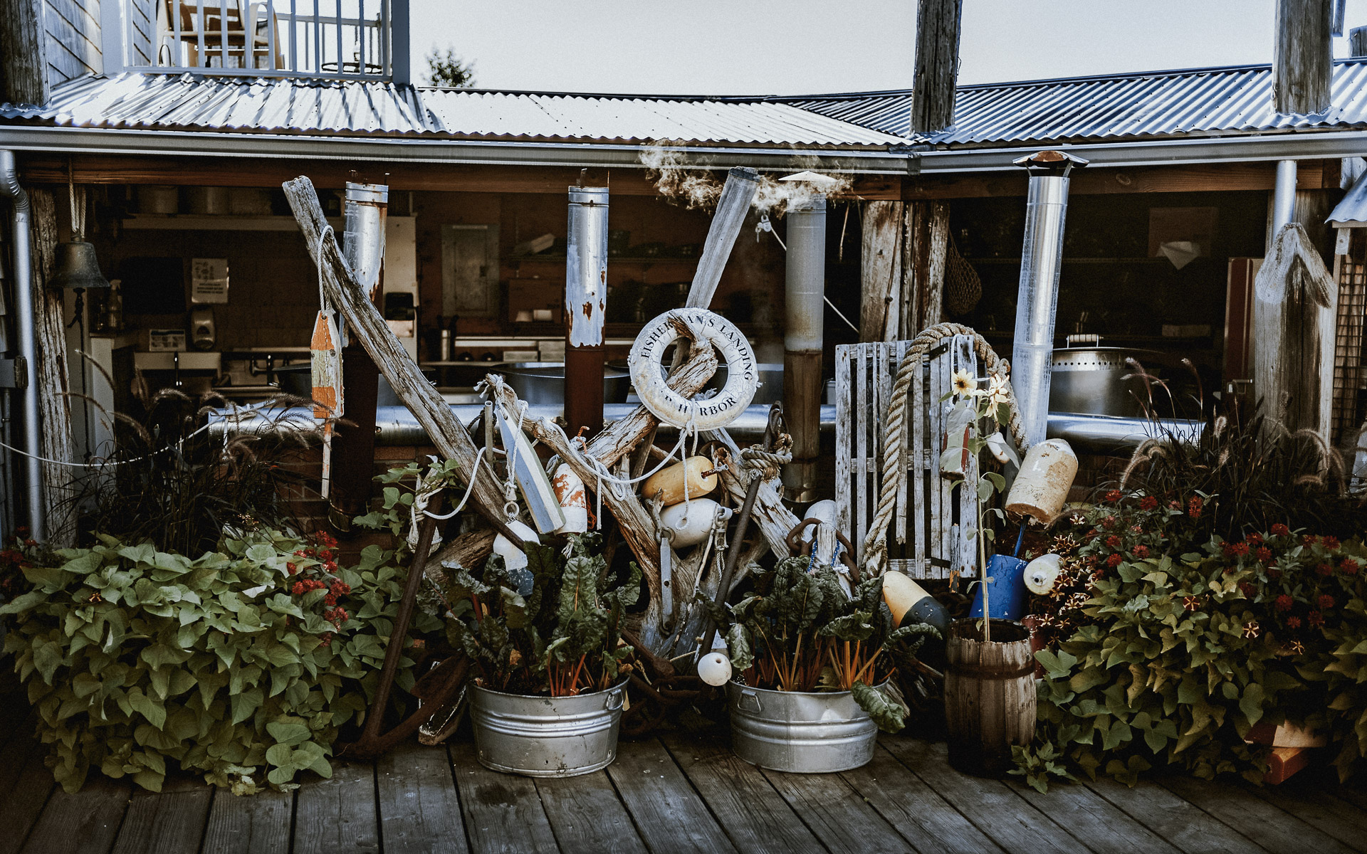 Twisted-oaks-studio-maine-bar-harbor-2019-7.jpg