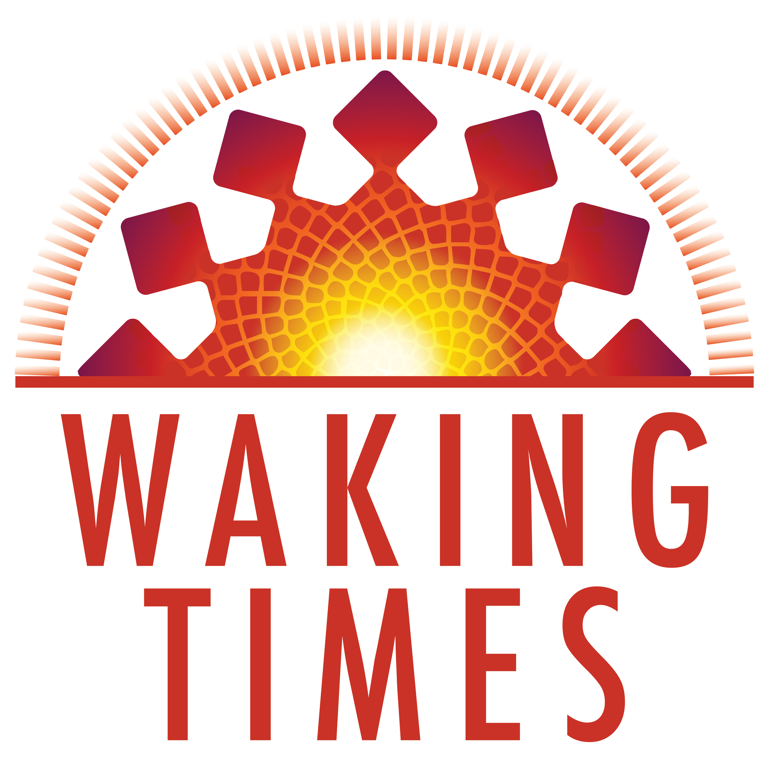 Waking Times logo | wakingtimes.com