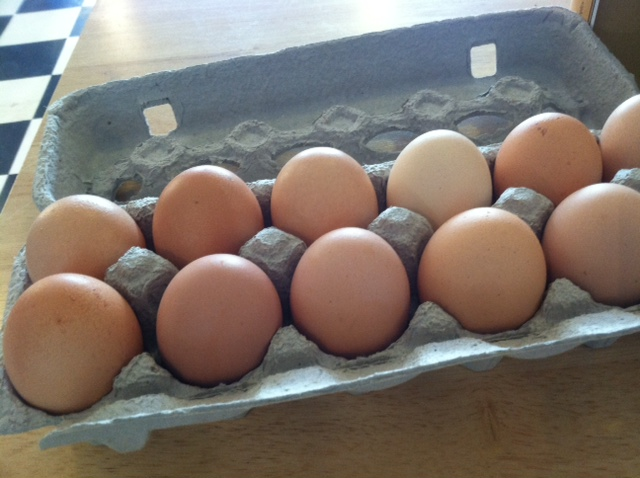 Great local eggs with a carton you can return to us for reuse!