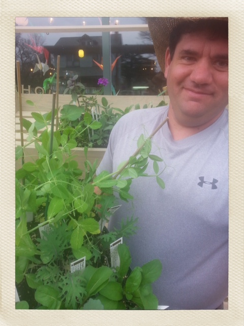 Veggie and Herb starts from Forrest Green Farm