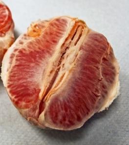 Delicious grapefruit