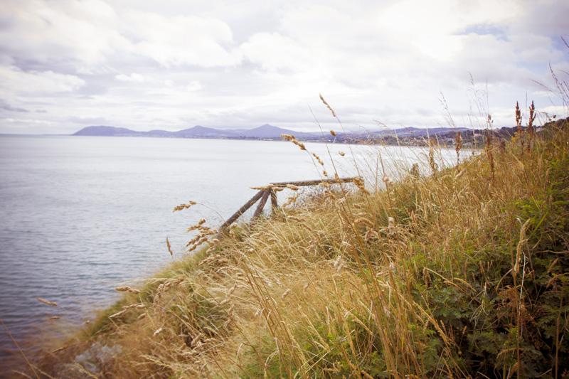 Looking south, near Killiney Hill