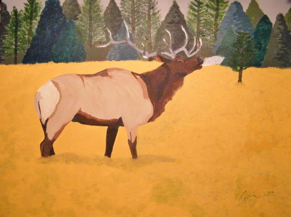 Bull Elk.jpg