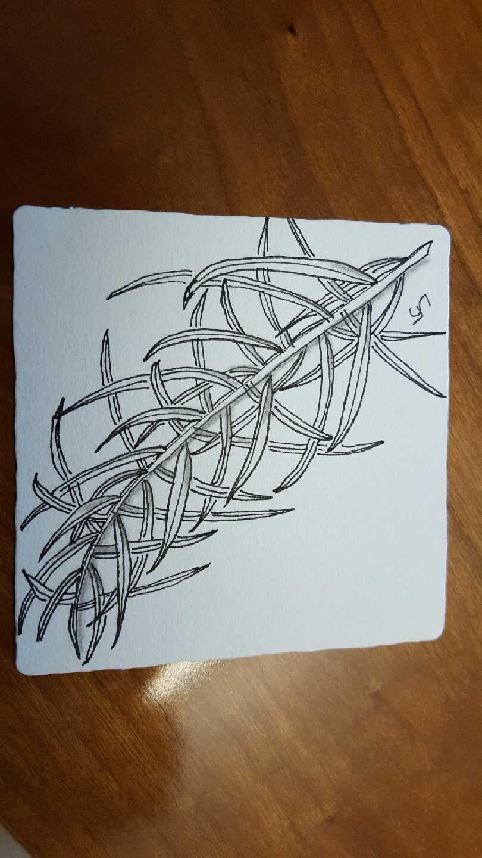Lou Ann Smith Zentangle 2.jpeg