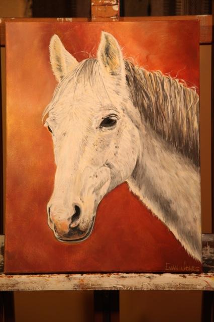 Evan Jones horse red bckgrd.jpg