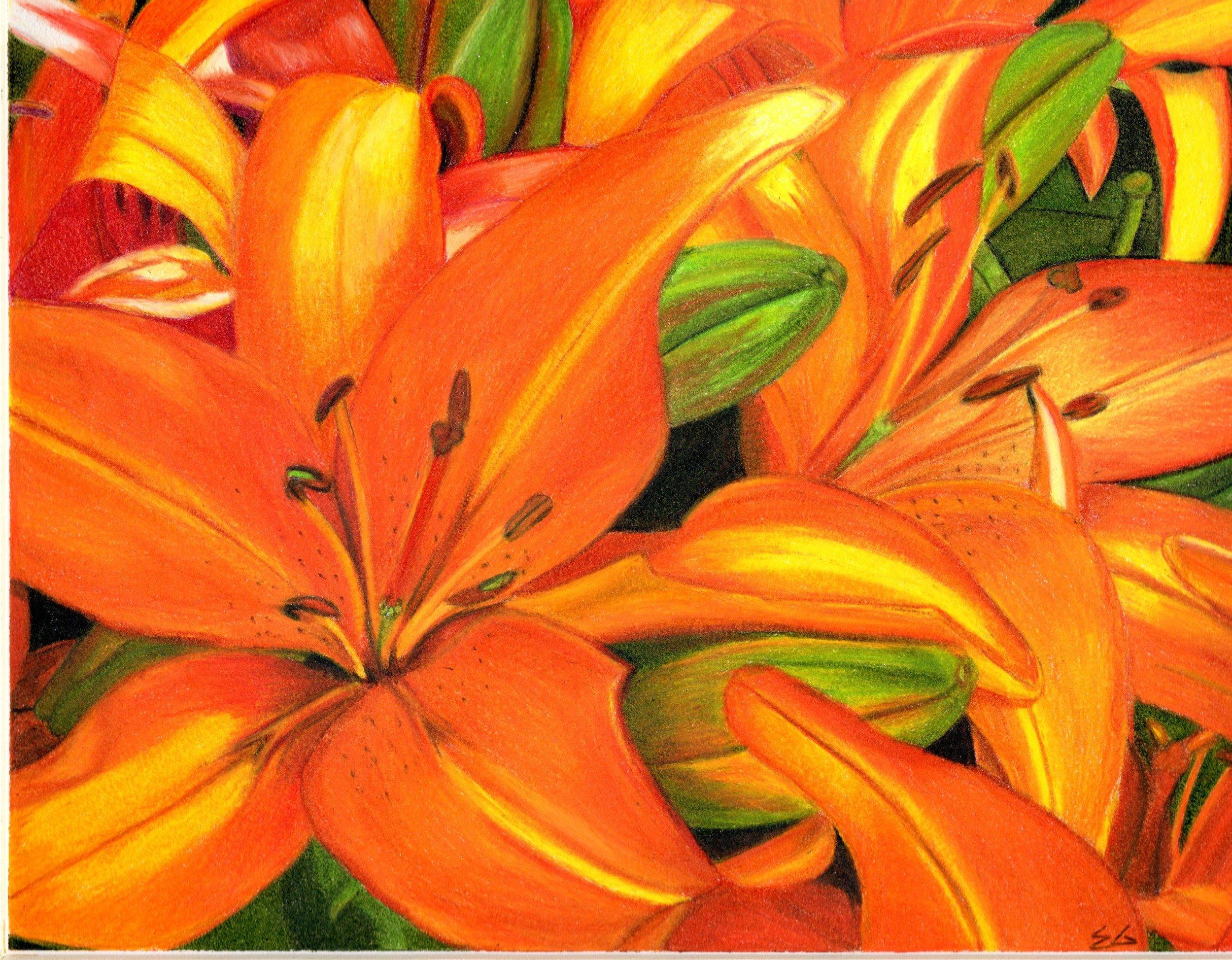 Ekta Gupta Colored Pencil 002.jpg