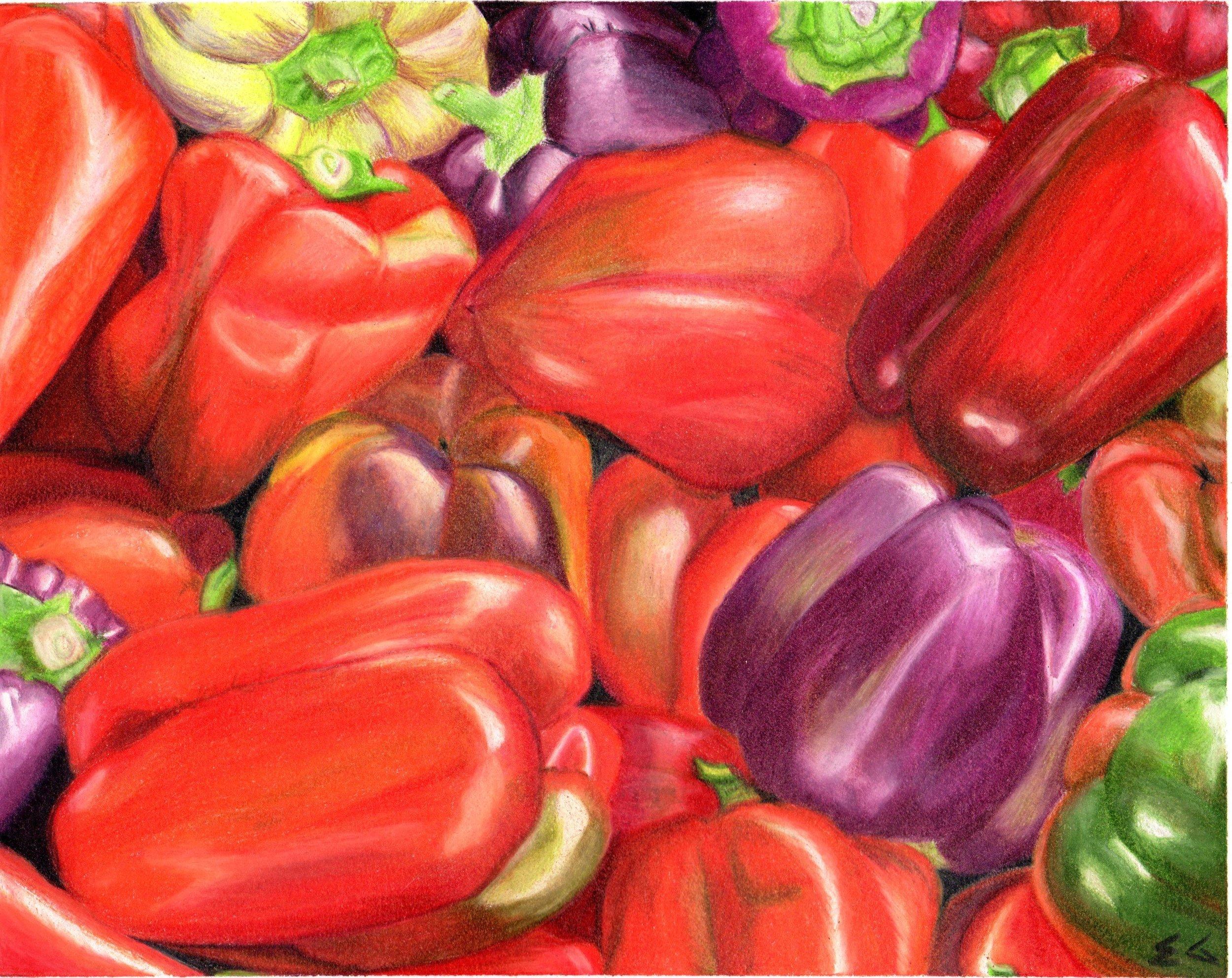 Ekta Gupta Colored Pencil 001.jpg