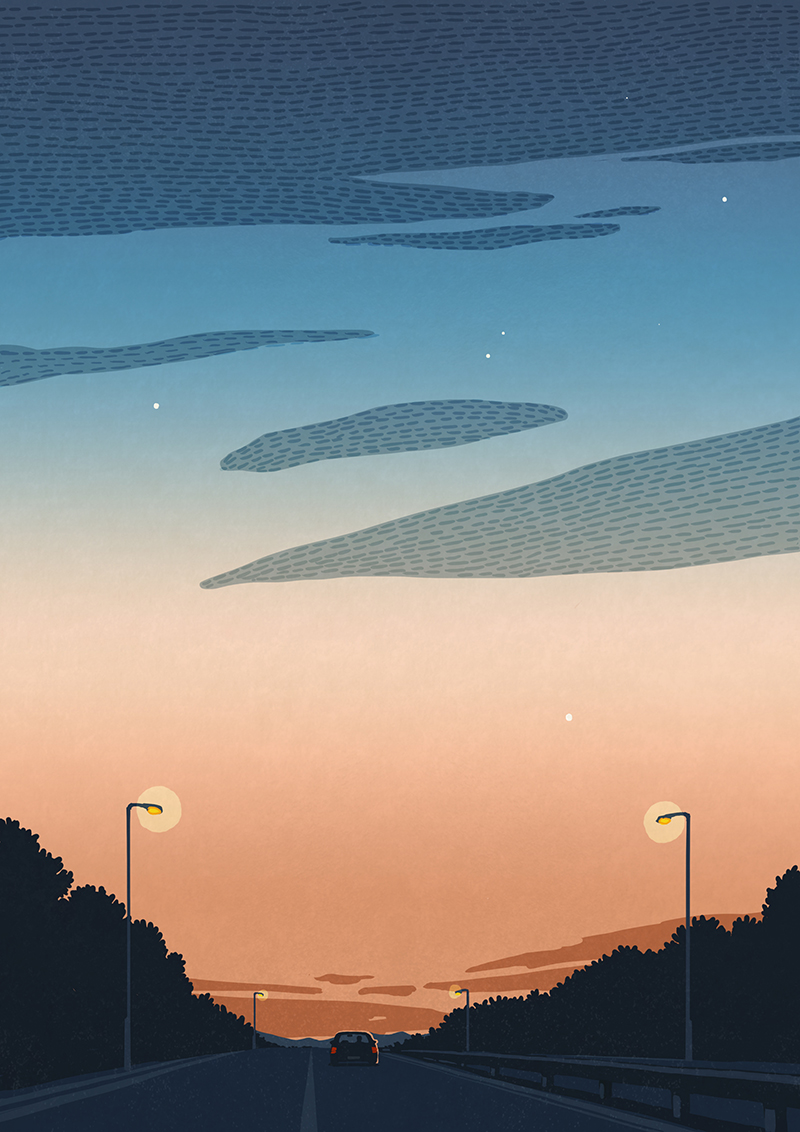 evening-drive.jpg