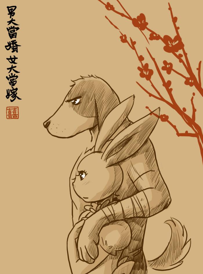 bunny dog.jpg