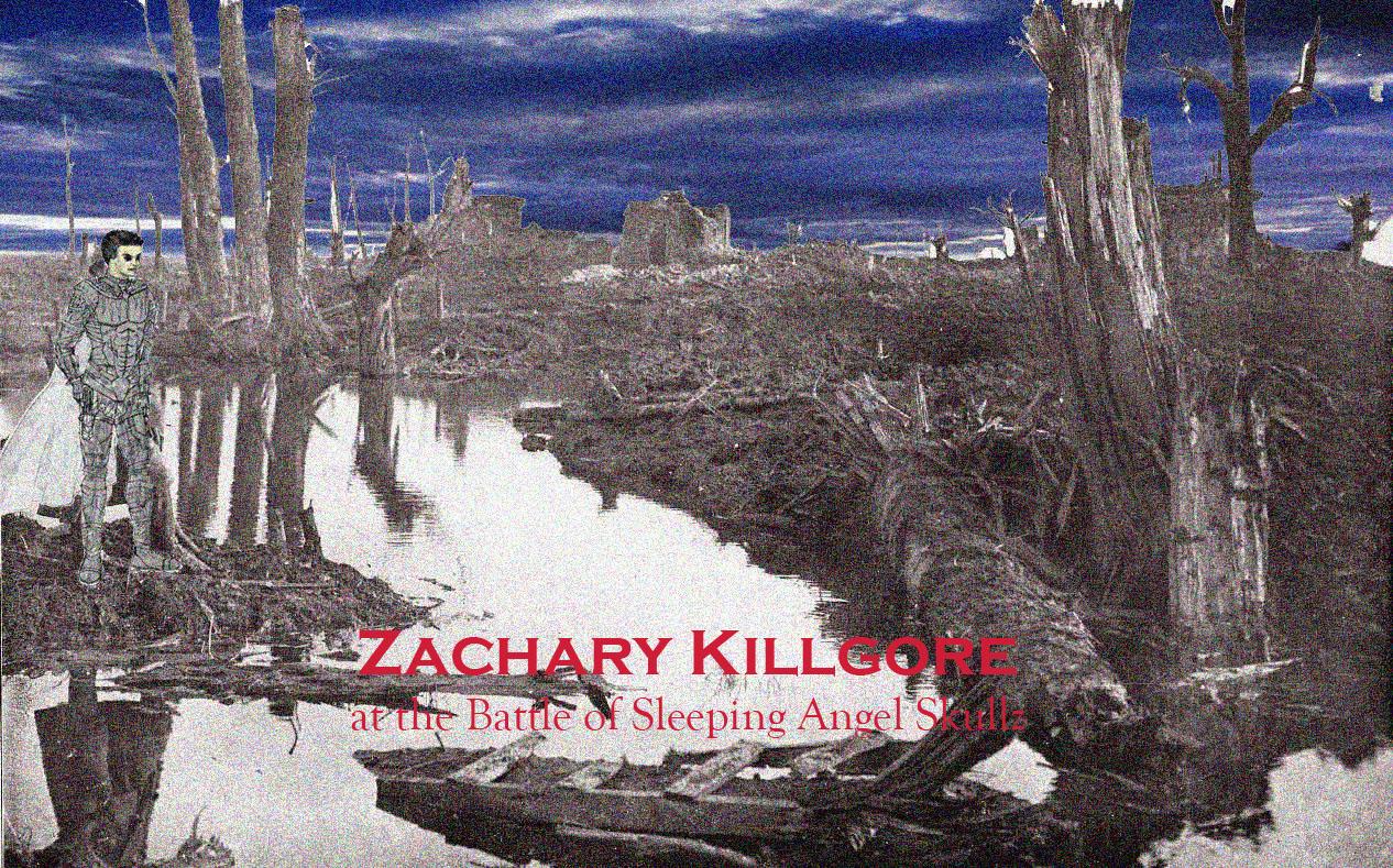 Zacharybattlefield3.jpg
