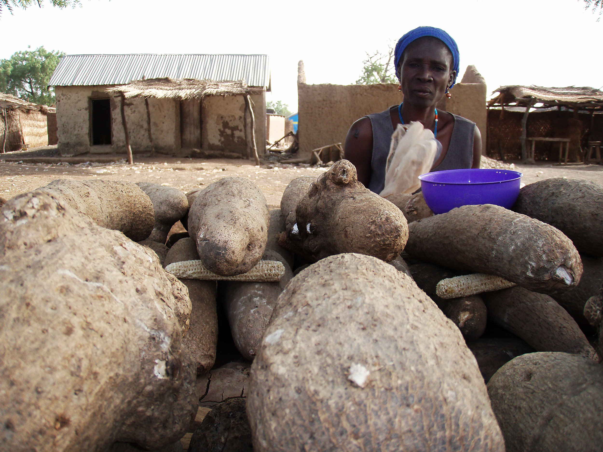 A woman sells yams along the highway in Sagbiebou, in northern Togo.