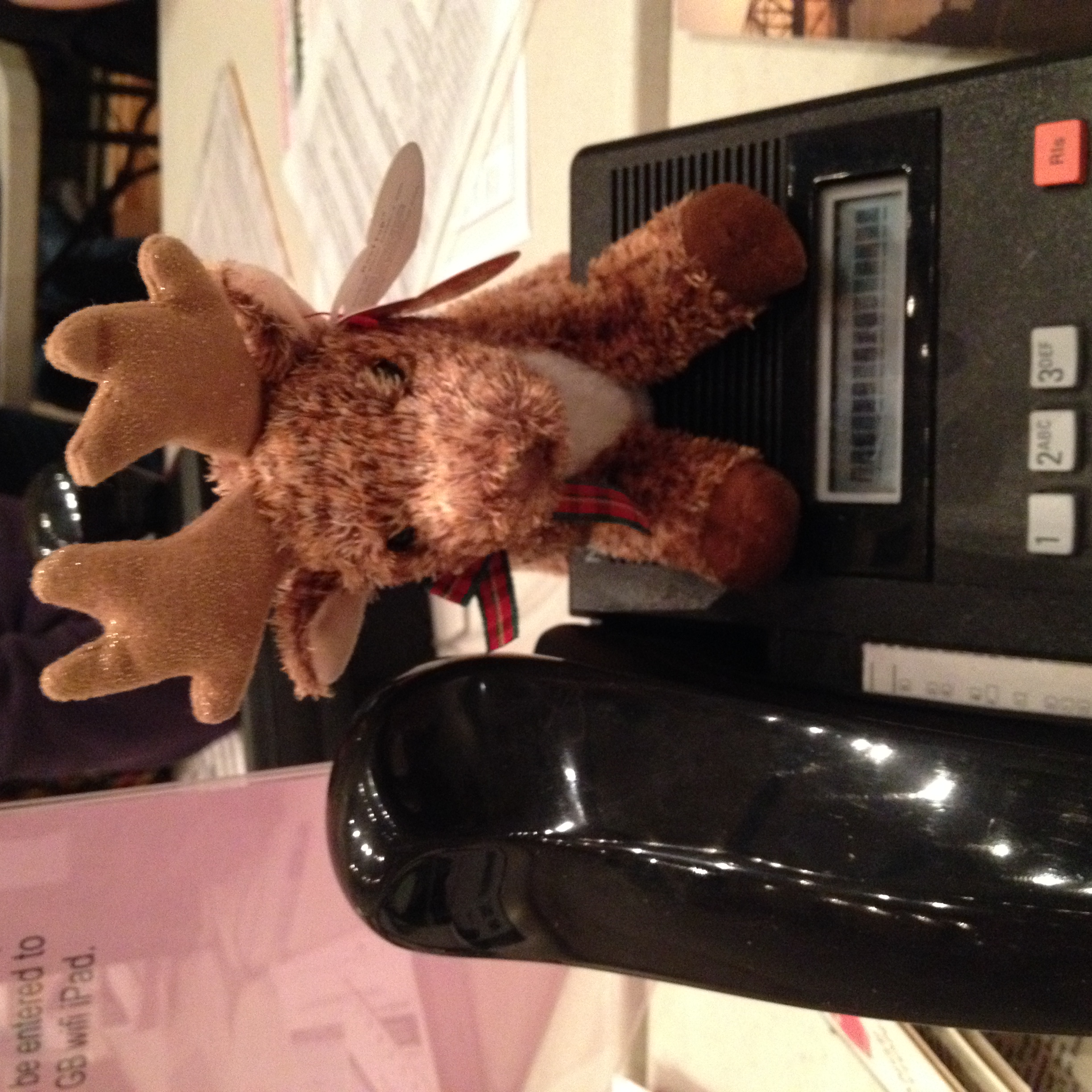 If you have the reindeer, you get the next pledge drive call. This used to be a penguin, but the penguin disappeared.