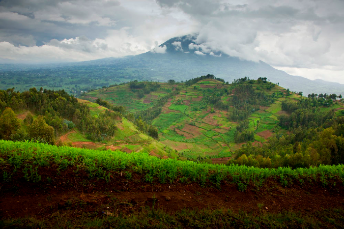 Blogpost1-landscape.jpg