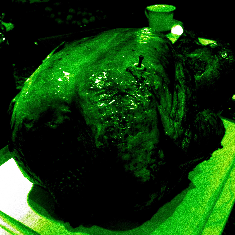 Dark Turkey.JPG