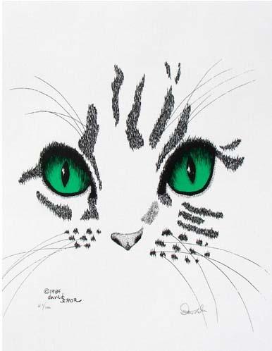 Tom Cat.jpg