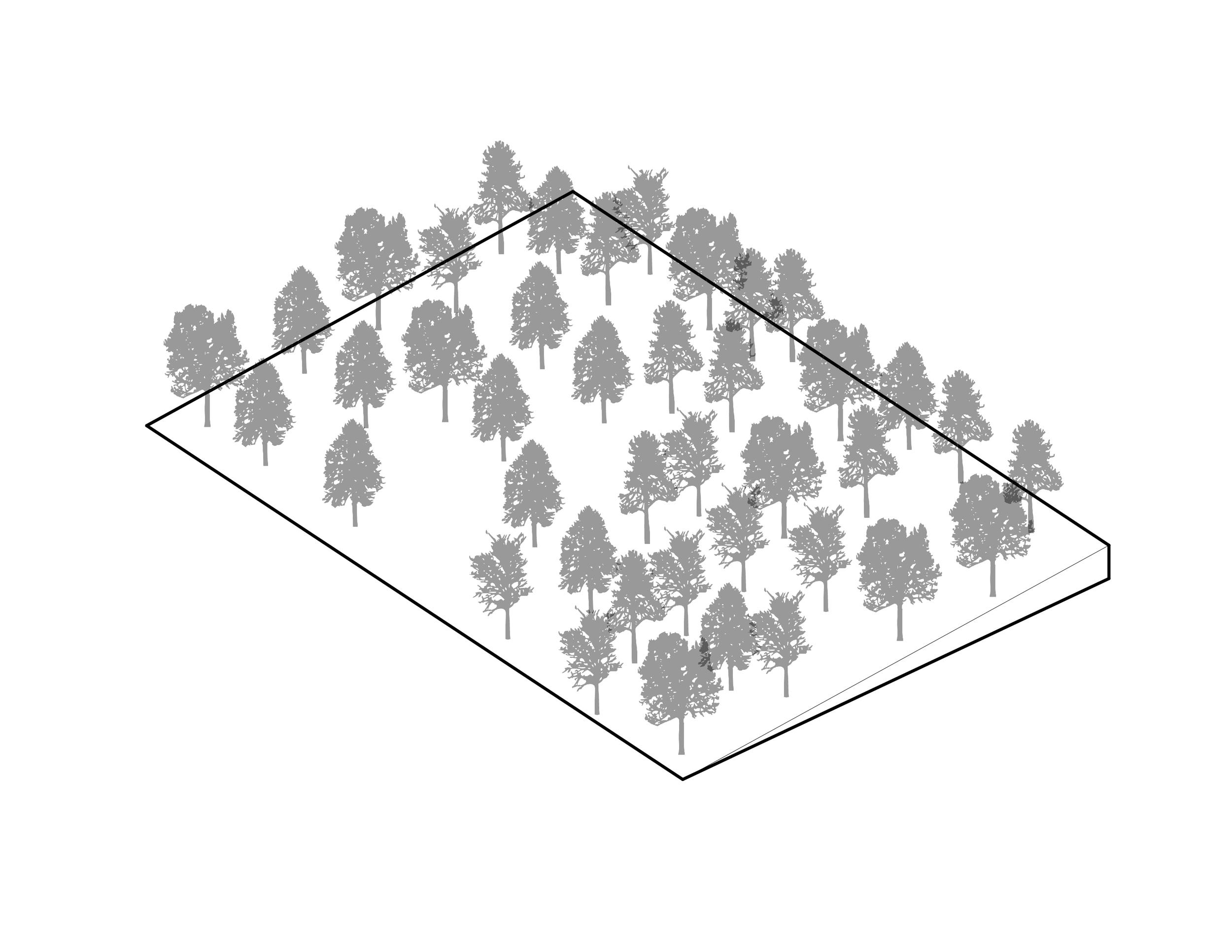 1407_01_Diagrams_Site-01.jpg