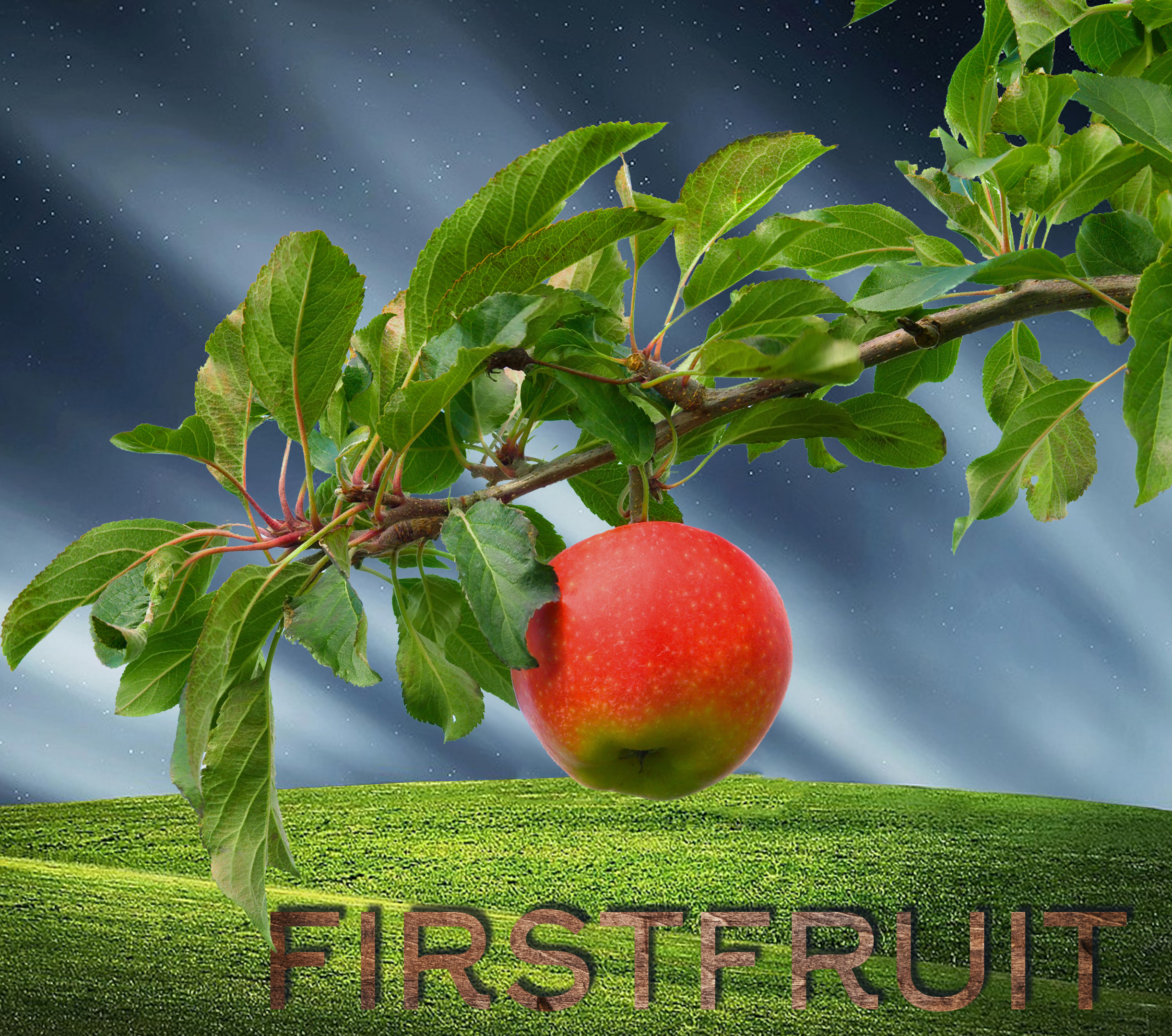Firstfruit - Easter 2019