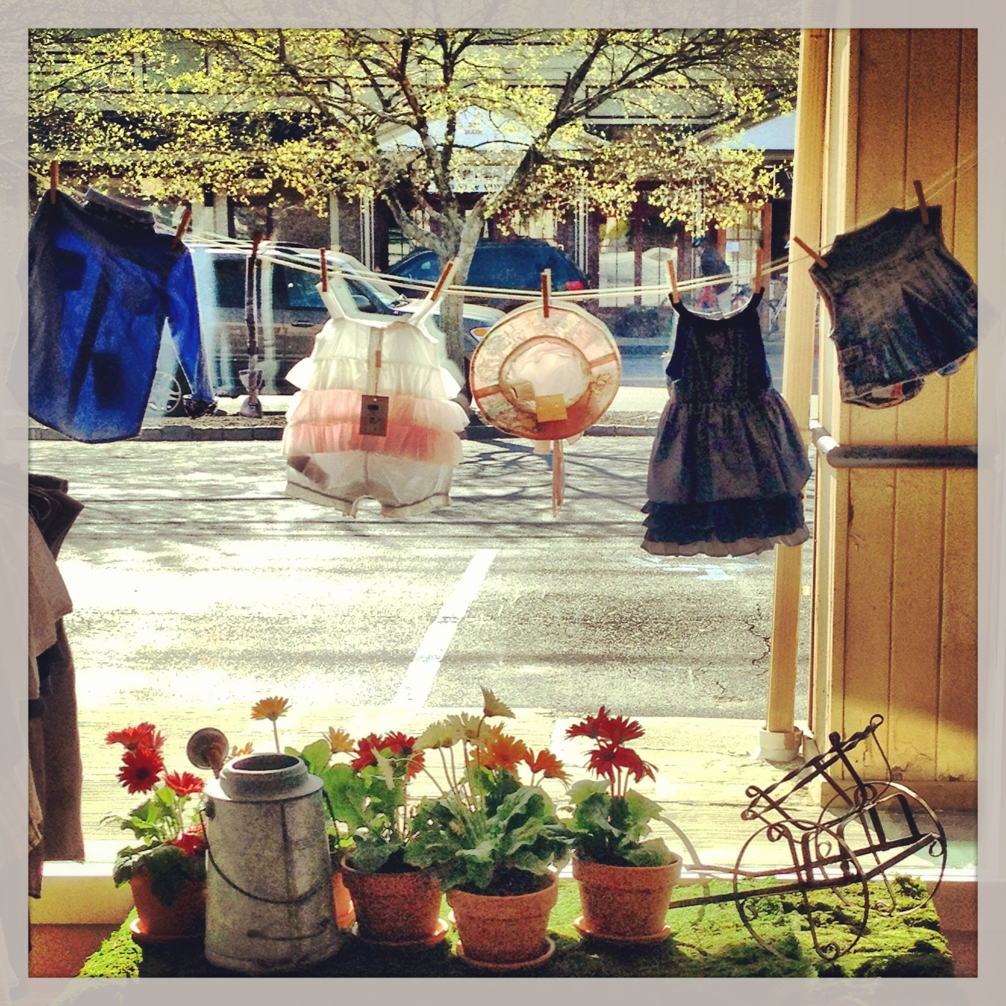 Our garden inspired Spring window :) with real plants and moss and some of our favorite pieces from our spring collection!