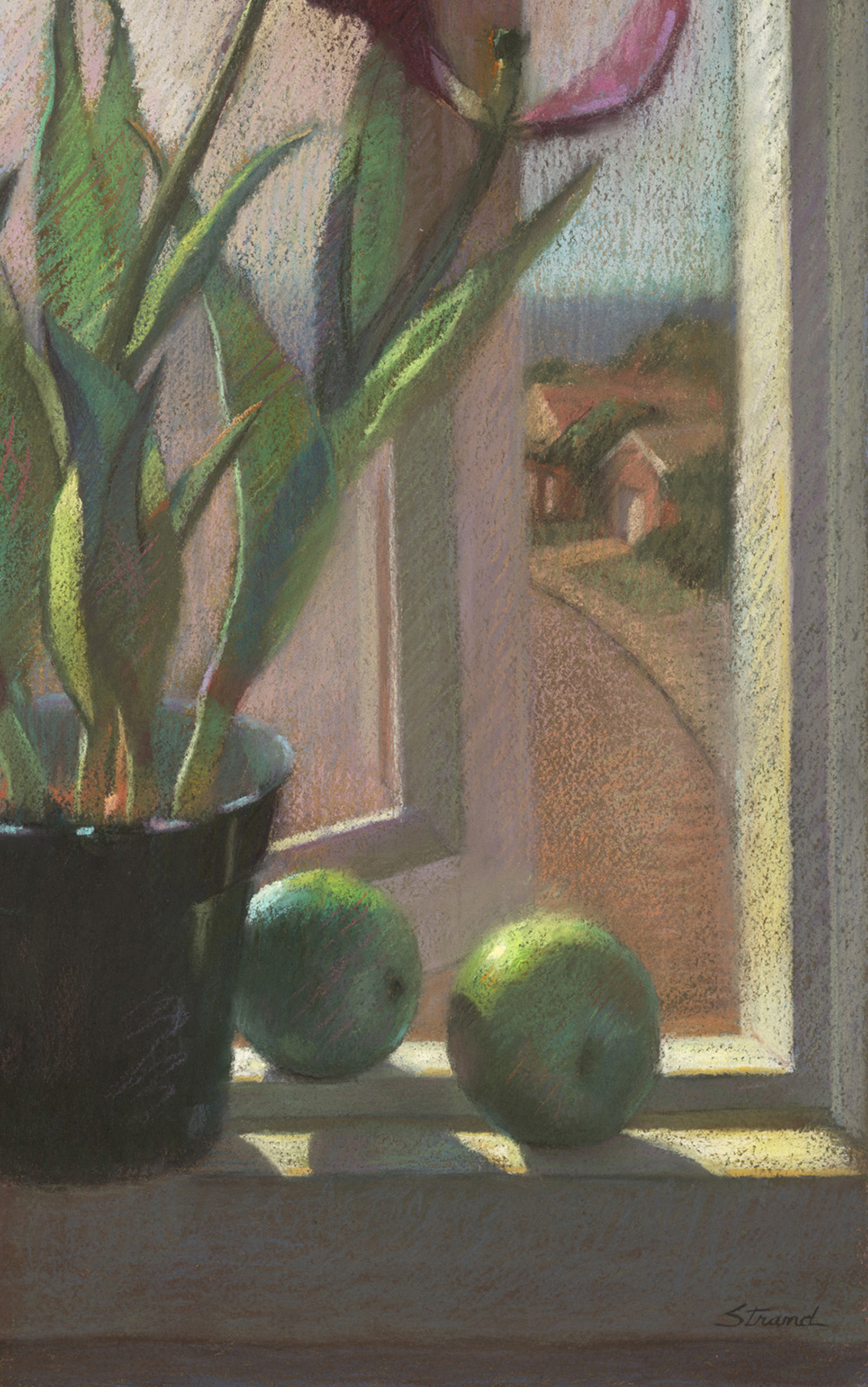 Windowsill to the Sea - Sally Strand