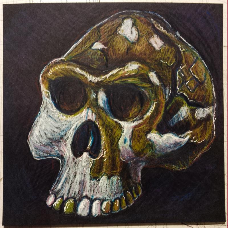 sketchbook-november-skull.jpg