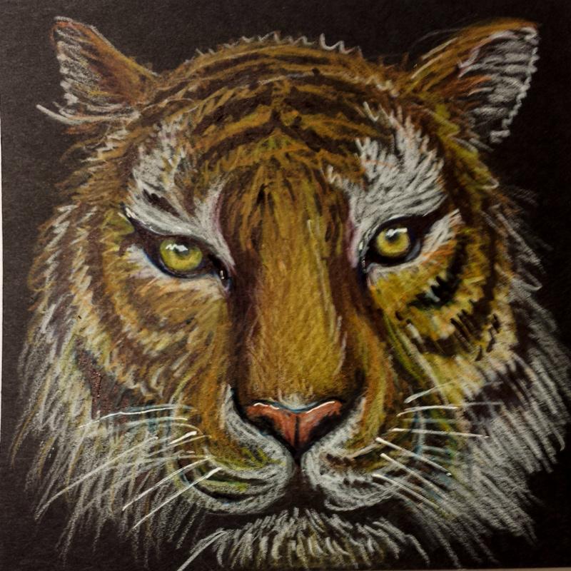 sketchbook-november-tiger.jpg