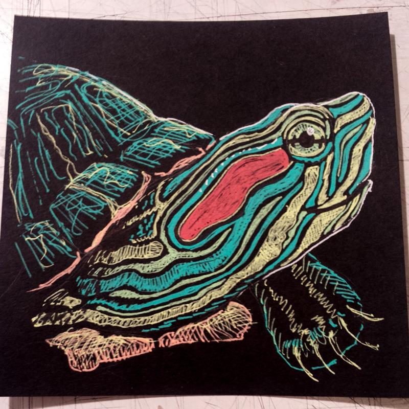 sketchbook-november-turtle.jpg