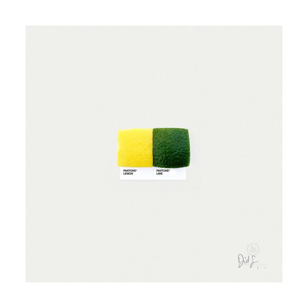 Pantone-Pairings-05_lemon_lime-600x600.jpg