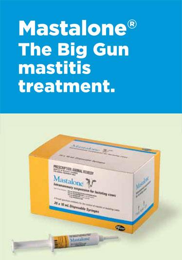 Mastalone advertising