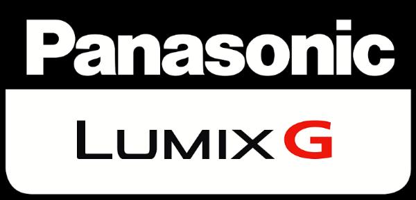 Lumix Logo Austin Wedding Videographer