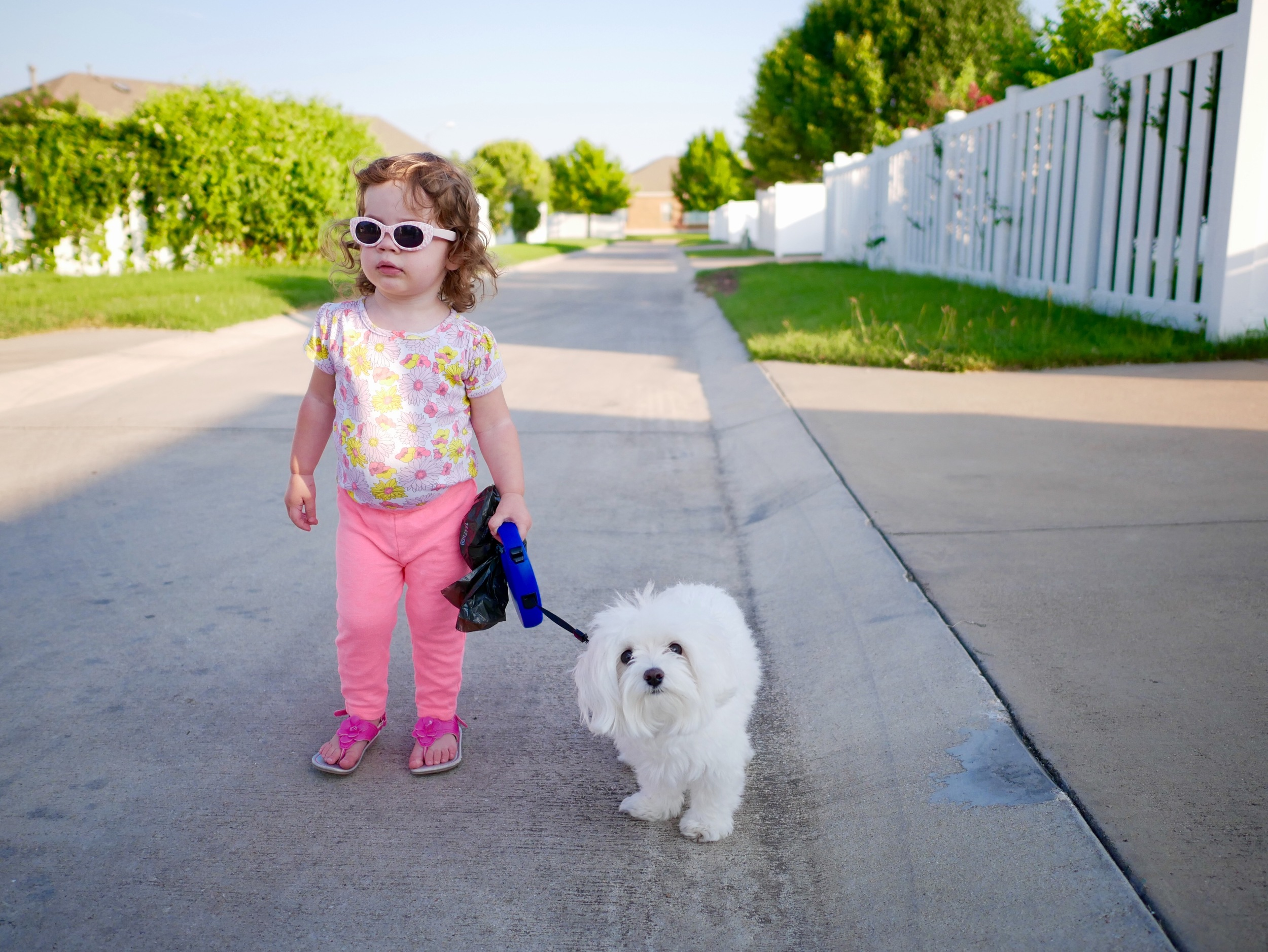 Annabelle walks her puppy Jack on the way to the park.