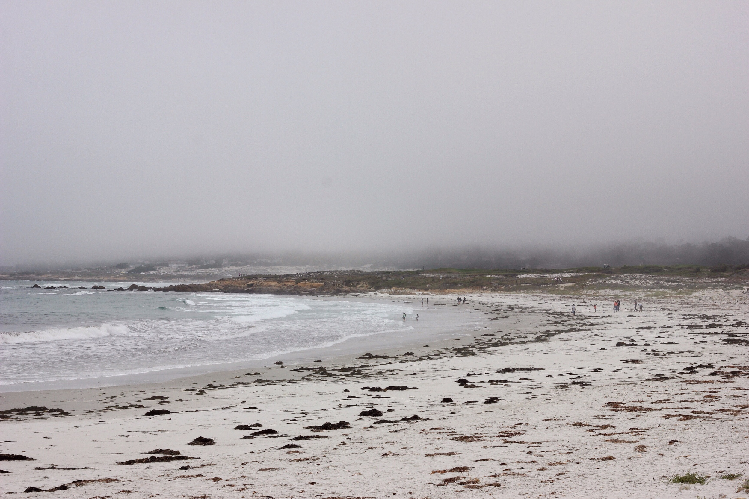 Fog covering the coast.