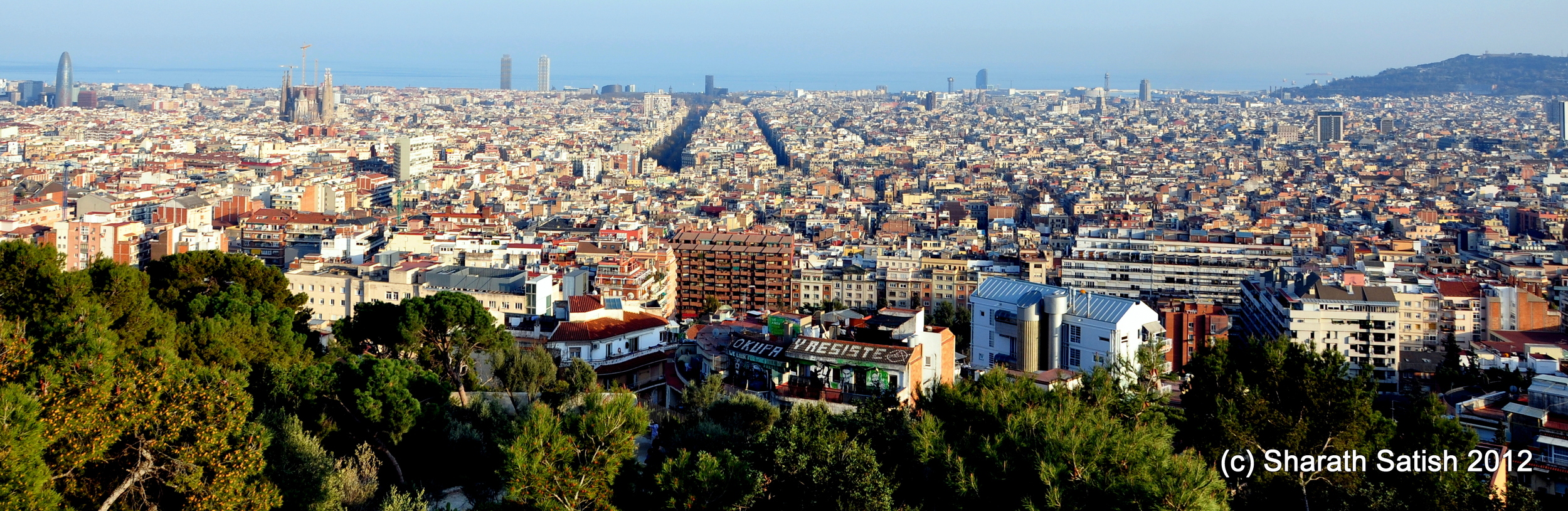 A view of the city from Park Guell